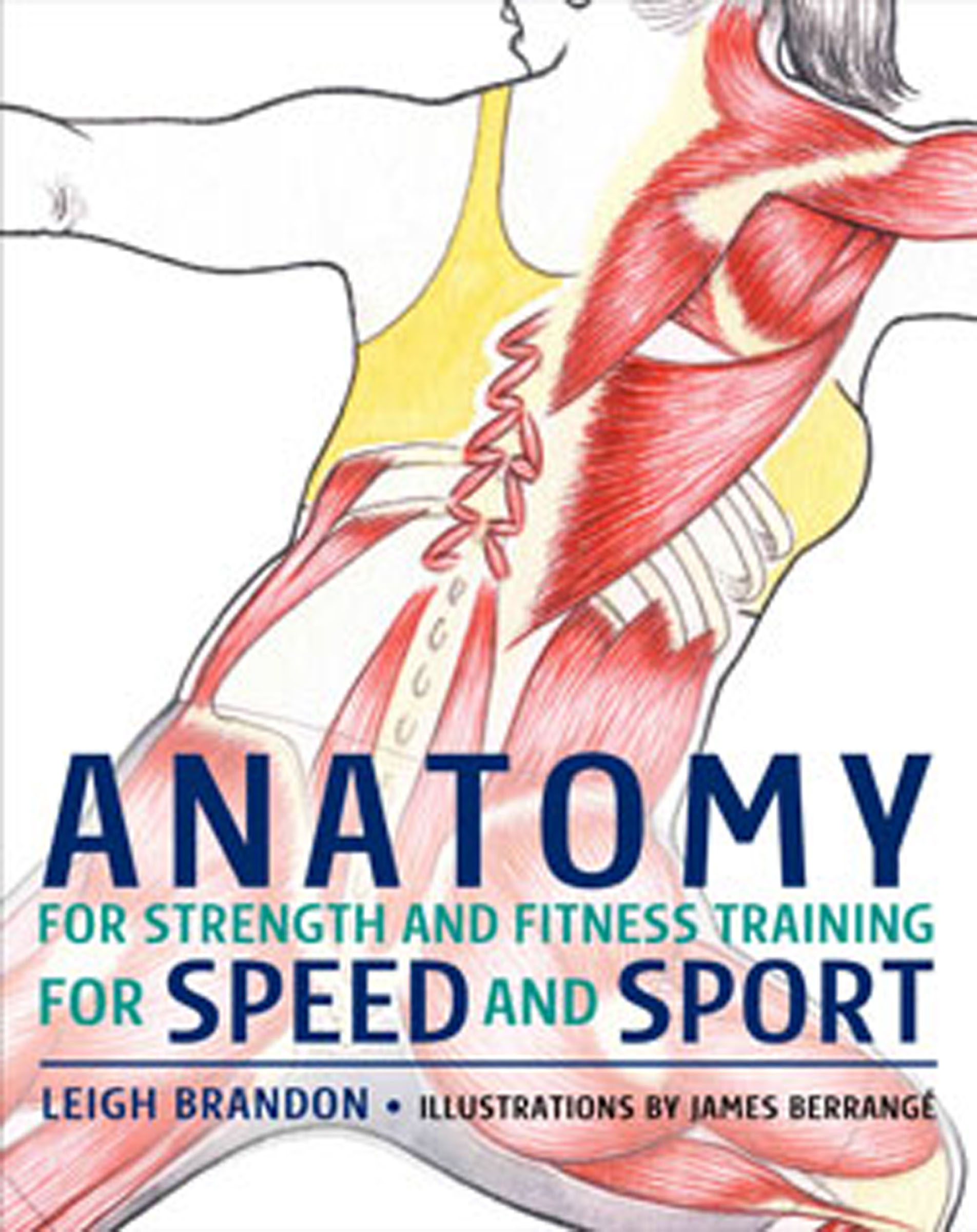 ANATOMY FOR STRENGTH AND FITNESS TRAINING FOR SPEED AND SPORT EBOOK ...