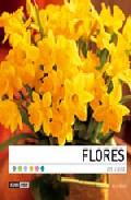 Flores En Casa por Alicia Winter