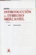 Introduccion Al Derecho Mercantil (19ª Ed.) por Francisco Vicent Chulia