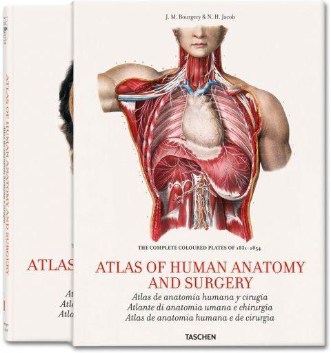 ATLAS DE ANATOMIA HUMANA Y CIRUGIA (ESTUCHE 2 VOLS.) (ESPAÑOL-ITA ...