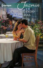 derrumbando barreras (ebook)-trish wylie-9788468796819