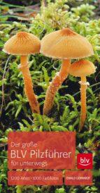 der grosse blv pilzführer für unterwegs (ebook)-ewald gerhardt-9783835461529