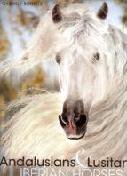 andalusians & lusitanos. iberian horses / pura raza española (ed. bilingüe)-gabriele boiselle-9783741918339