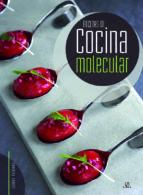 recetas de cocina molecular carmen fernandez 9788466234139