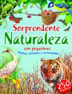 El libro de Sorprendente naturaleza autor VV.AA. EPUB!
