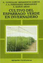 cultivo del esparrago verde en invernadero alberto gonzalez benavente garcia juan antonio fernandez hernandez sebastian bañon arias 9788471144249