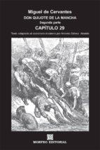 don quijote de la mancha. segunda parte. capítulo 29 (texto adaptado al castellano moderno por antonio gálvez alcaide) (ebook)-cdlap00002659