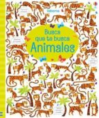 busca que te busca: animales-kristeen robson-9781474955379