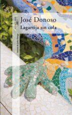 la cola de la lagartija-jose donoso-9788420472089