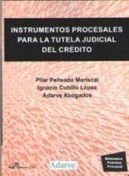 instrumentos procesales para la tutela judicial de credito pilar peiteado mariscal ignacio cubillo lopez 9788491485889