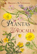plantas de rocalla 9788492678099
