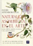 NATURALEZA ASOMBROSA EN EL ARTE - 9788497943819 - DAVID ATTENBOROUGH