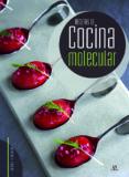 recetas de cocina molecular-carmen fernandez-9788466234139