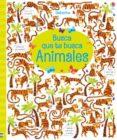 BUSCA QUE TE BUSCA: ANIMALES - 9781474955379 - KRISTEEN ROBSON