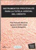 INSTRUMENTOS PROCESALES PARA LA TUTELA JUDICIAL DE CREDITO - 9788491485889 - PILAR PEITEADO MARISCAL