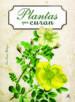 plantas que curan-9788466231039
