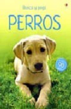 Mrnice.mx Perros (Libro De Pegatinas) Image
