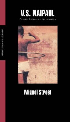 Costosdelaimpunidad.mx Miguel Street Image