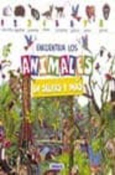 Comercioslatinos.es Encuentra Los Animales En La Selva Image