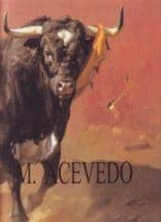 miguel acevedo (cast-ing)-j. llops-9788461223039