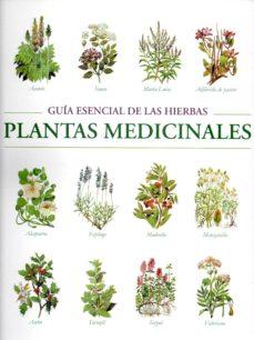 Pe guia esencial de las hierbas plantas medicinales for Plantas medicinales y ornamentales