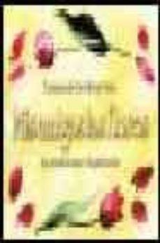 Upgrade6a.es Mis Amigas Las Flores: Su Simbolismo E Inspiracion Image