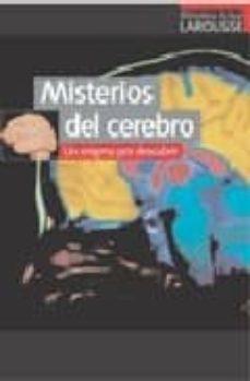 Valentifaineros20015.es Misterios Del Cerebro: Un Enigma Por Descubrir Image