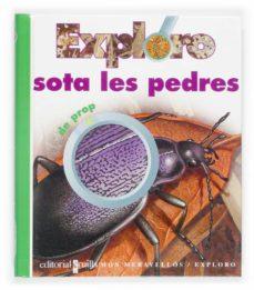 Premioinnovacionsanitaria.es Exploro Sota Les Pedres De Prop Image