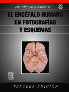 Descargas de libros reales gratis EL ENCEFALO HUMANO EN FOTOGRAFIAS Y ESQUEMAS + CD-ROM (3ª ED.) 9788480863759 DJVU iBook PDB de J. NOLTE, J.B. ANGEVINE JR