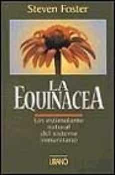 Permacultivo.es La Equinacea: Un Estimulante Natural Del Sistema Inmunitario Image